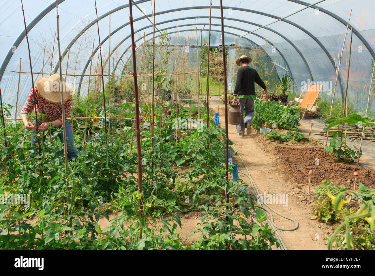 Kitchen Gardeners Gardeners In A Kitchen Garden And A Greenhouse Watering And