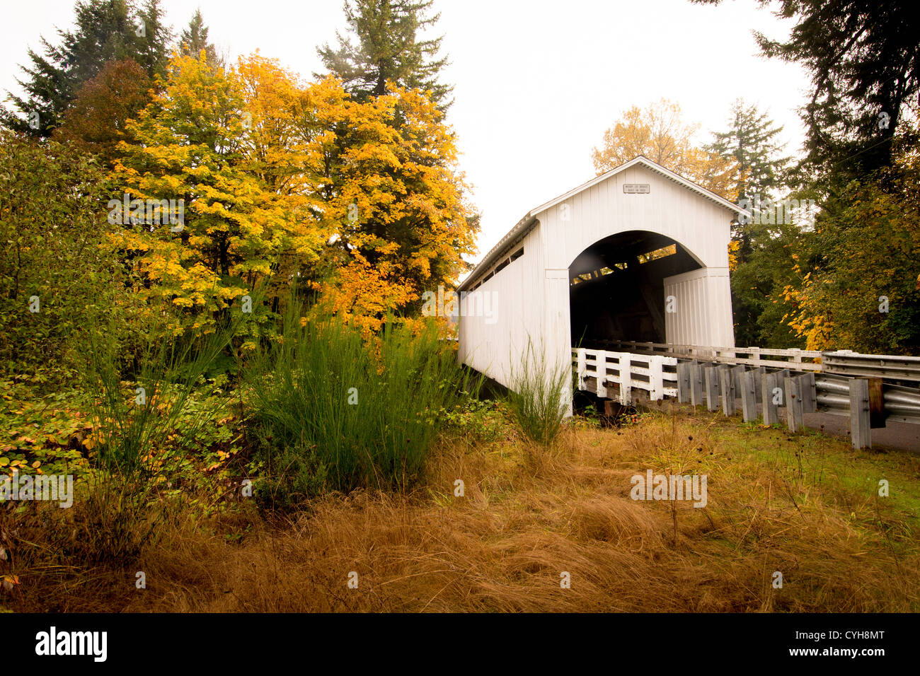 Mosby Creek Covered Bridge In Lane County Near Cottage