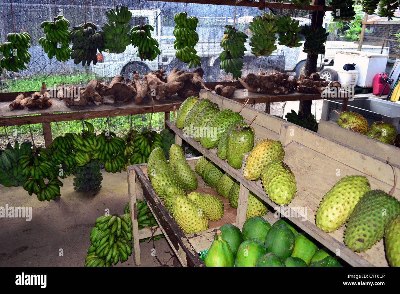 Locally grown vegetables and fruits, Local market, Pohnpei ...