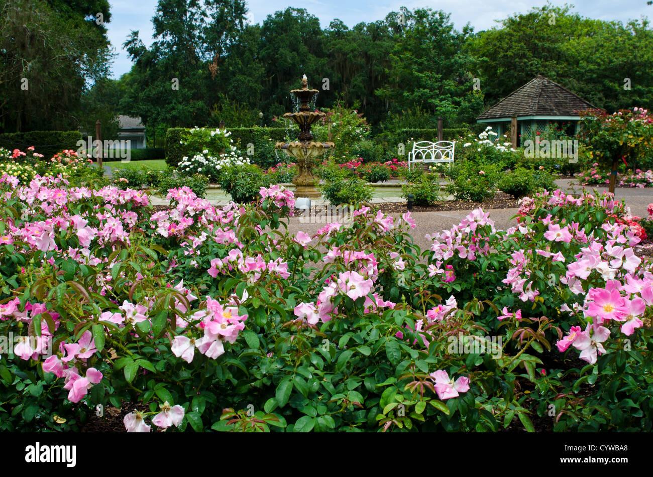 Harry P. Leu Gardens Orlando, Florida