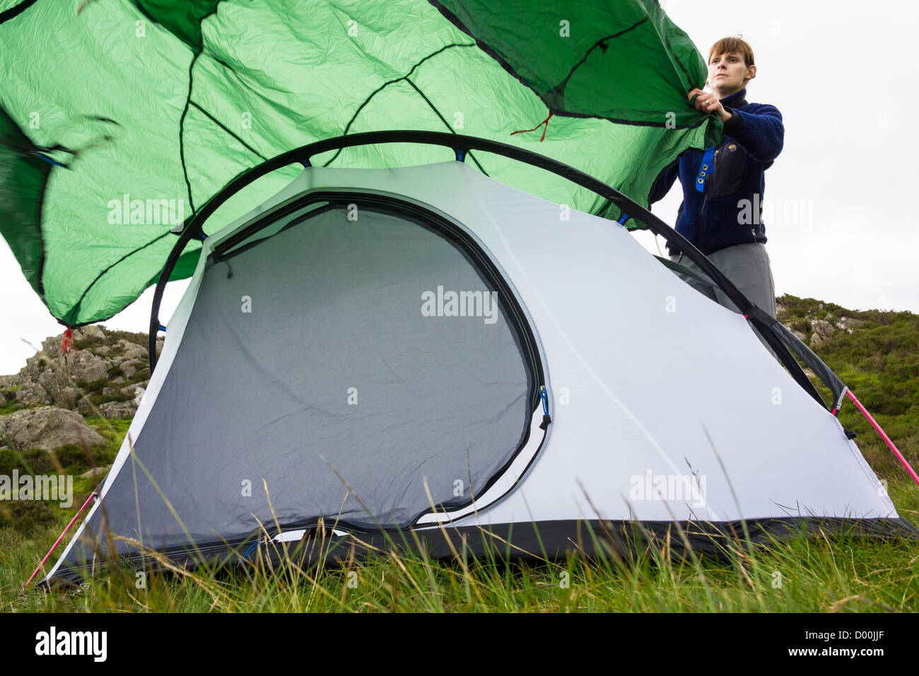 A woman wafting a fly sheet over a tent on grassy ground & A woman wafting a fly sheet over a tent on grassy ground Stock ...