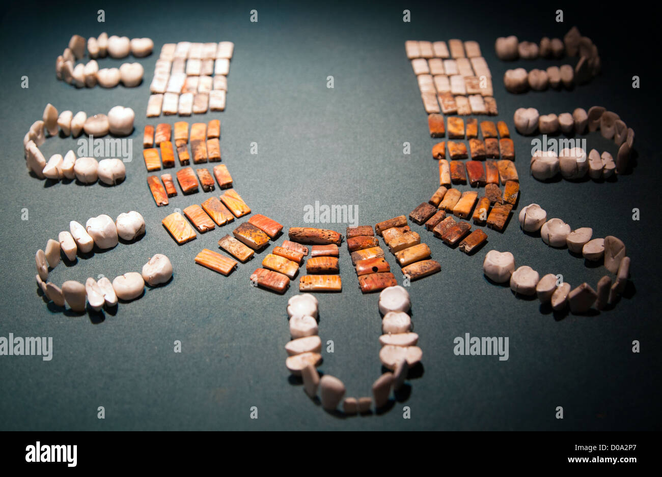 Exhibition Shell Necklace : Museo de sitio teotihuacan museum in mexico necklace