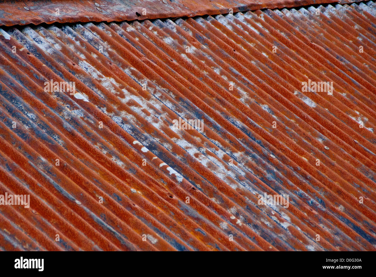 A Weathered Rusty Corrugated Tin Roof