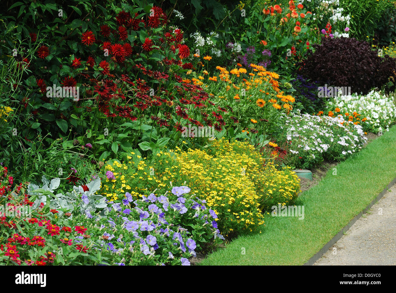 english country garden with assorted flowers in bedpathway