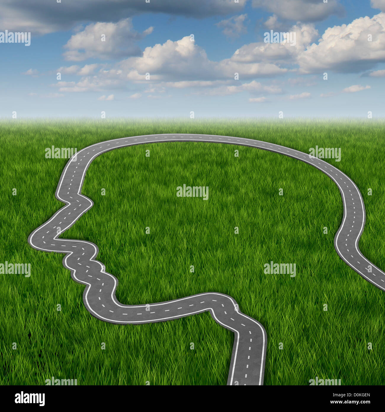 career path and business planning decisions through education and career path and business planning decisions through education and searching for financial opportunities as a road