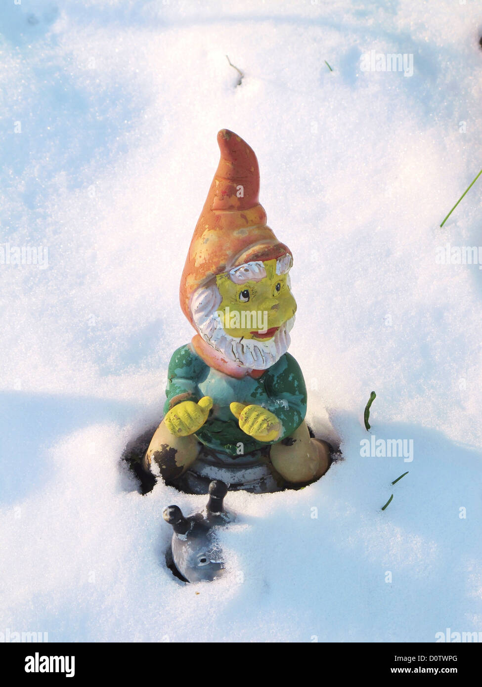 dwarf midget garden gnome winters snow cold covered snail