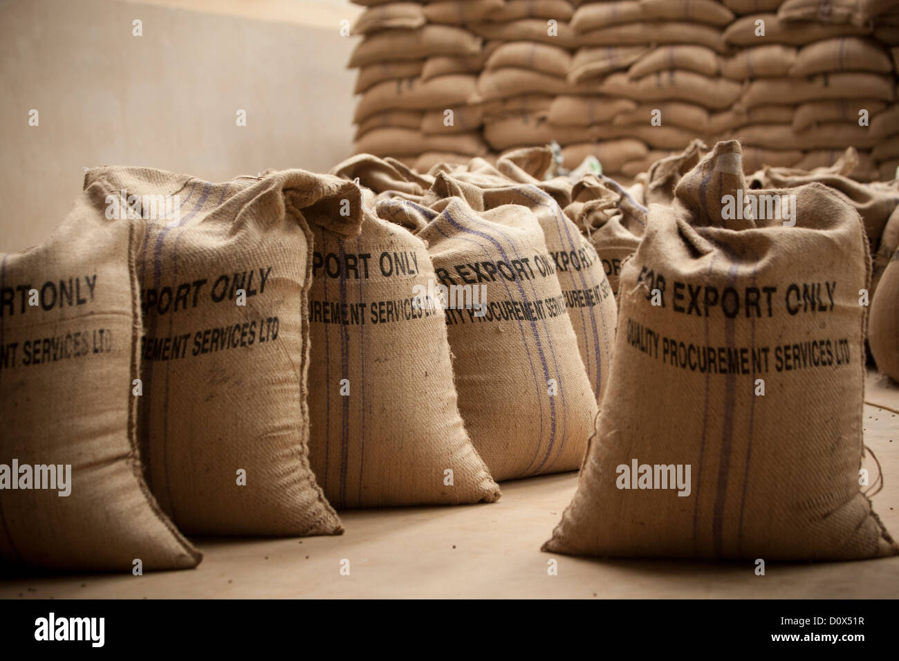 Bags of coffee beans are ready for export at a warehouse ...