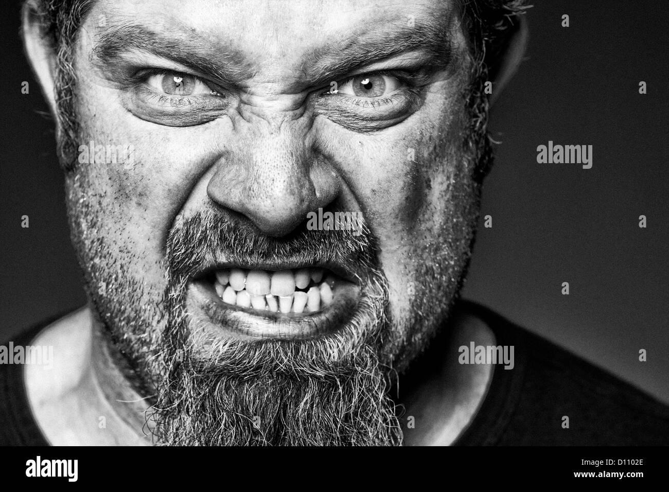 Angry man with sneer on his face Stock Photo, Royalty Free ...