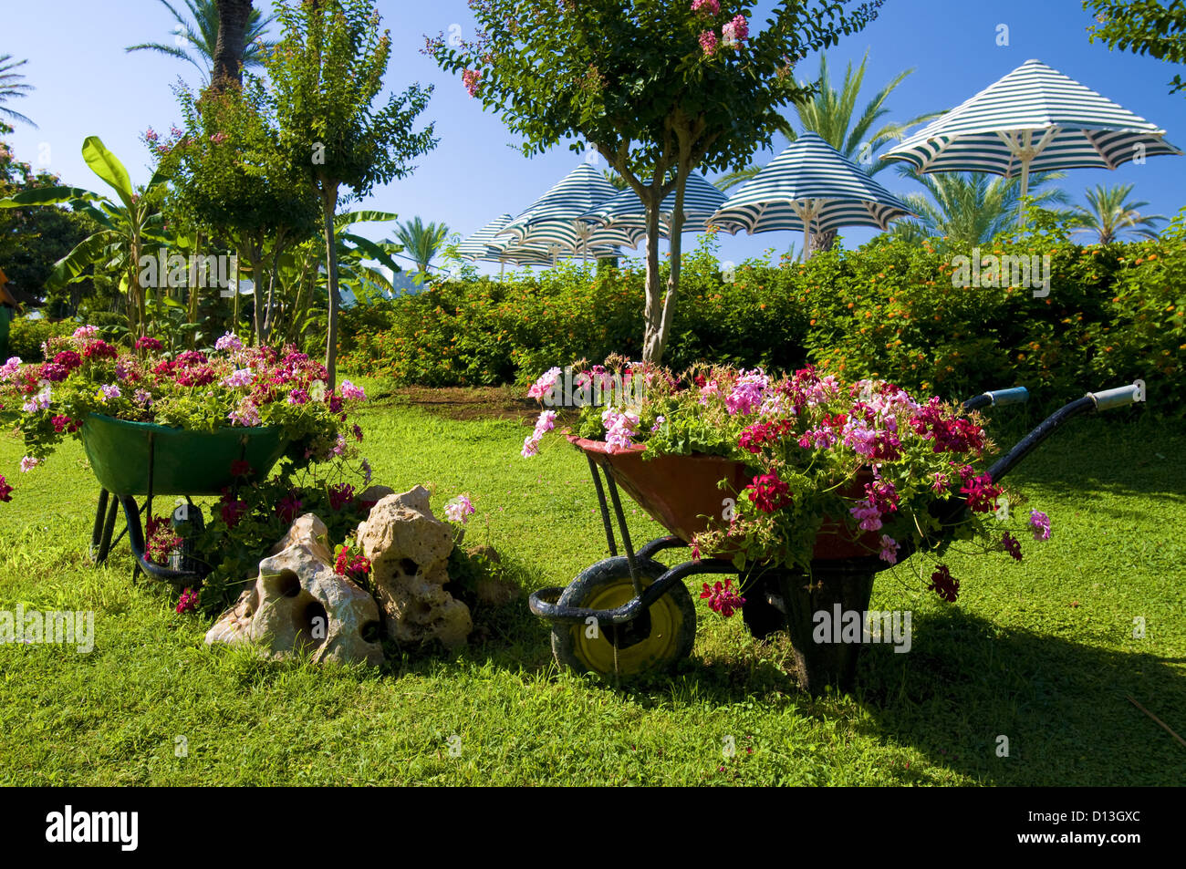 decorative flower garden with carts at the resort Stock Photo ...