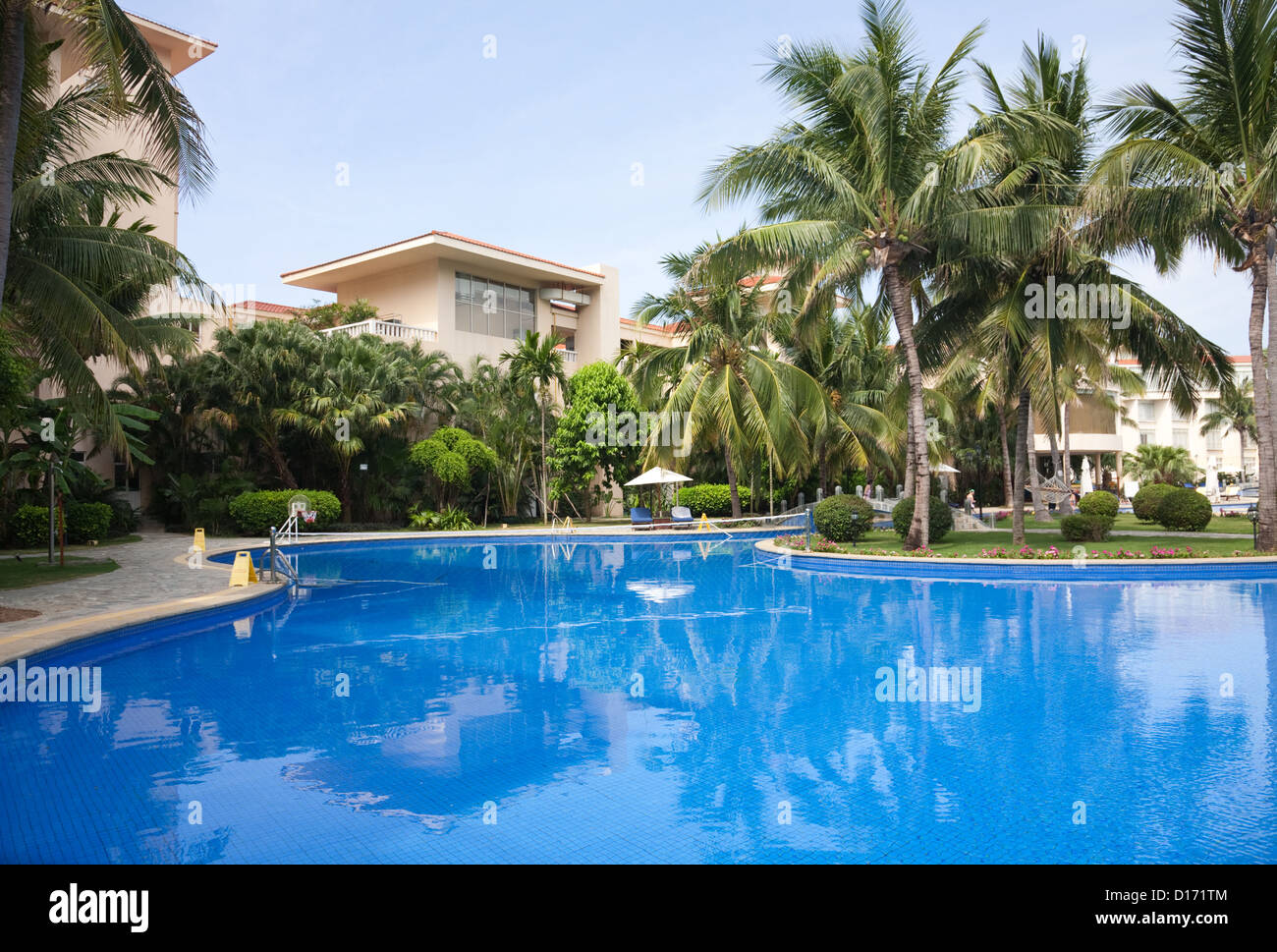 Tropical Swimming Pool With Coconut Palm Trees By The Poolside Stock Photo Royalty Free Image