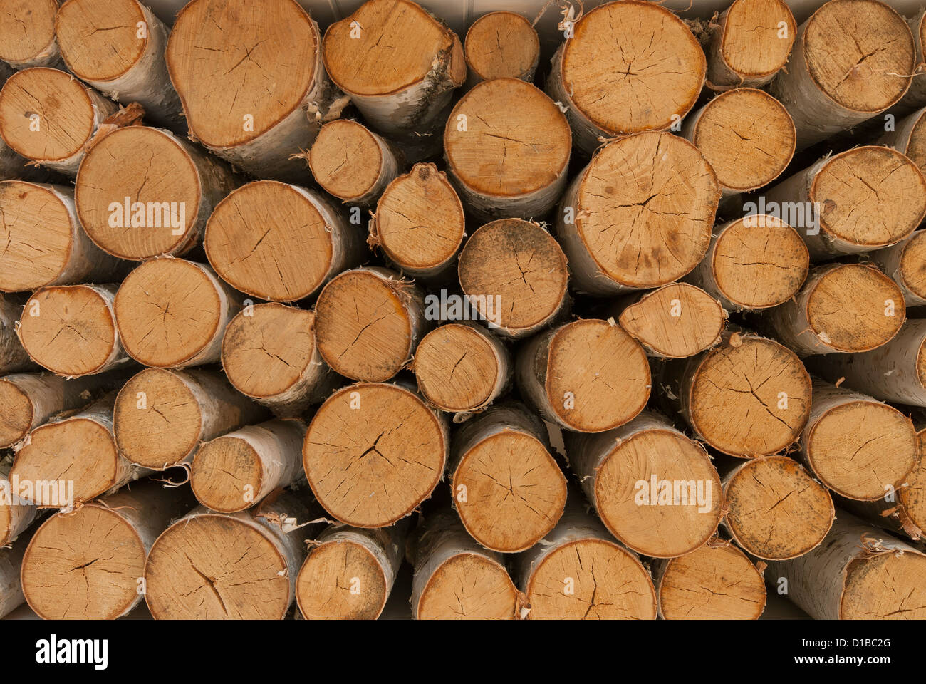 birch wood logs stacked up ready for a fireplace stock photo