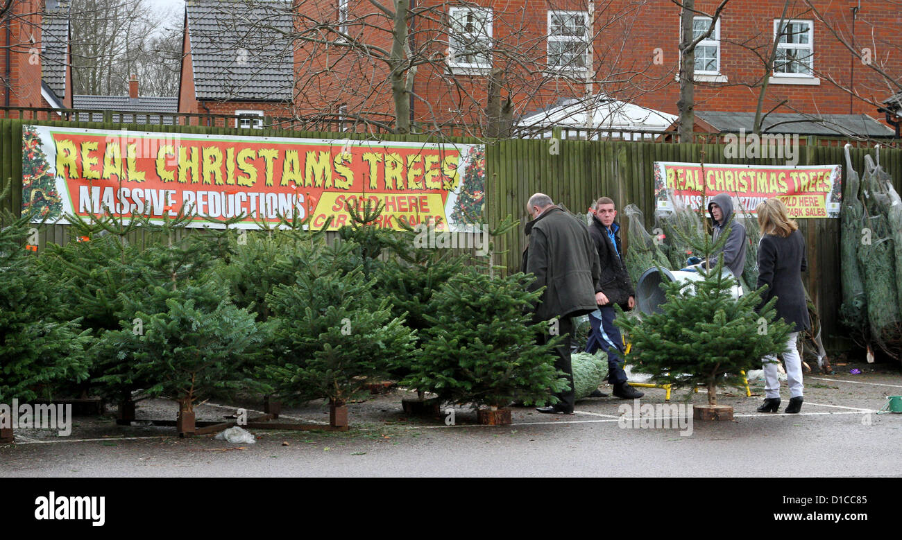 15th December 2012. Sign Advertising U0027Real CHRISTAMS Treesu0027 And Another  Sign Next It With Correct Spelling. Christmas Trees On Sale In Morrisons