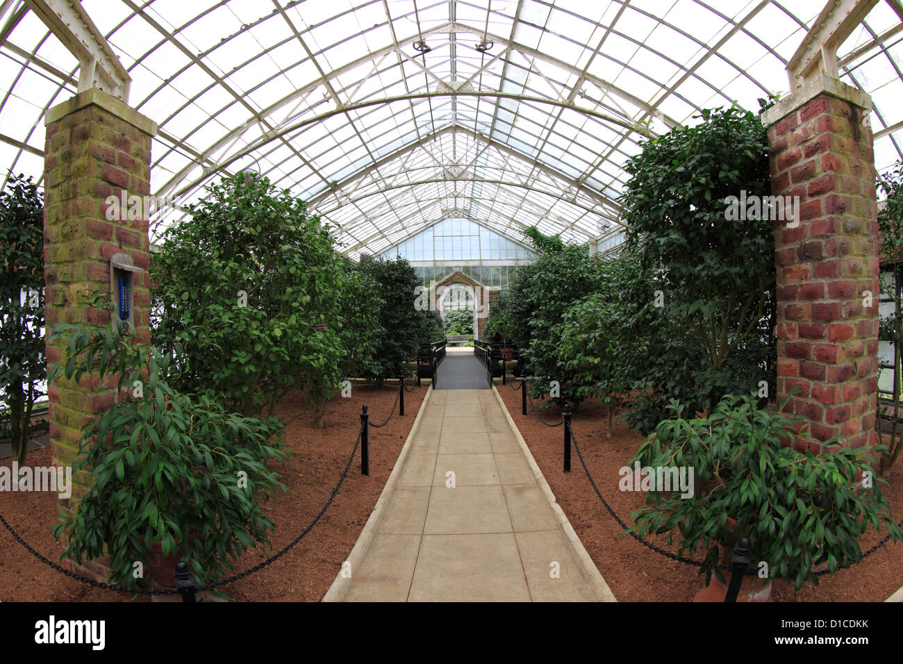Greenhouse At Planting Fields Arboretum Oyster Bay Long Island New York