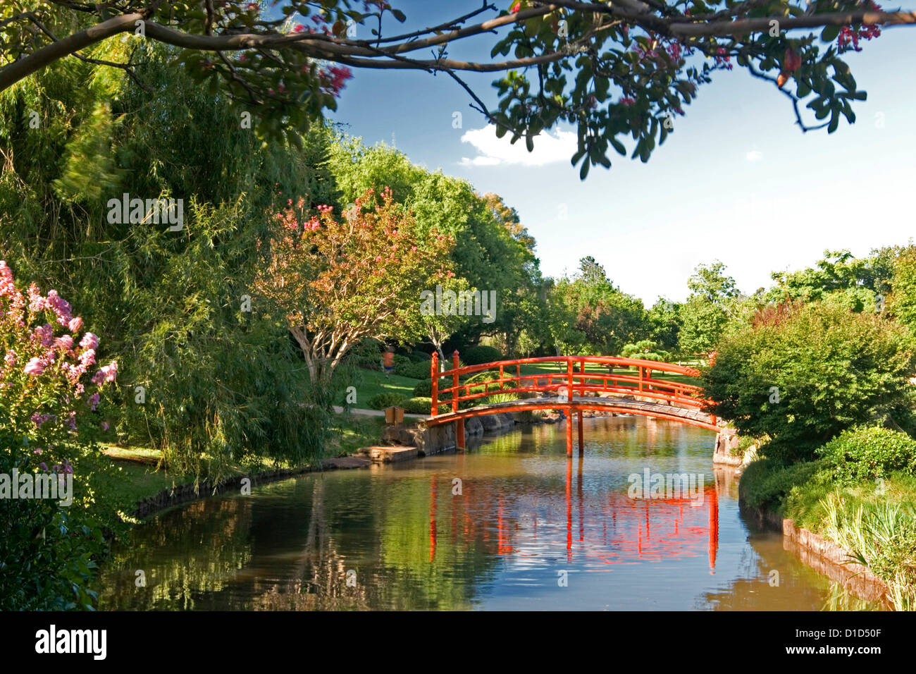 Japanese garden with ornate arched bridge reflected in blue water of ...