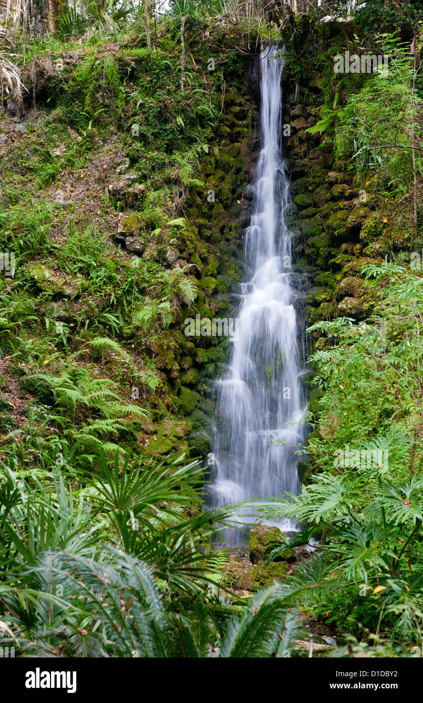 One Of Several Man Made Waterfalls In Rainbow River State