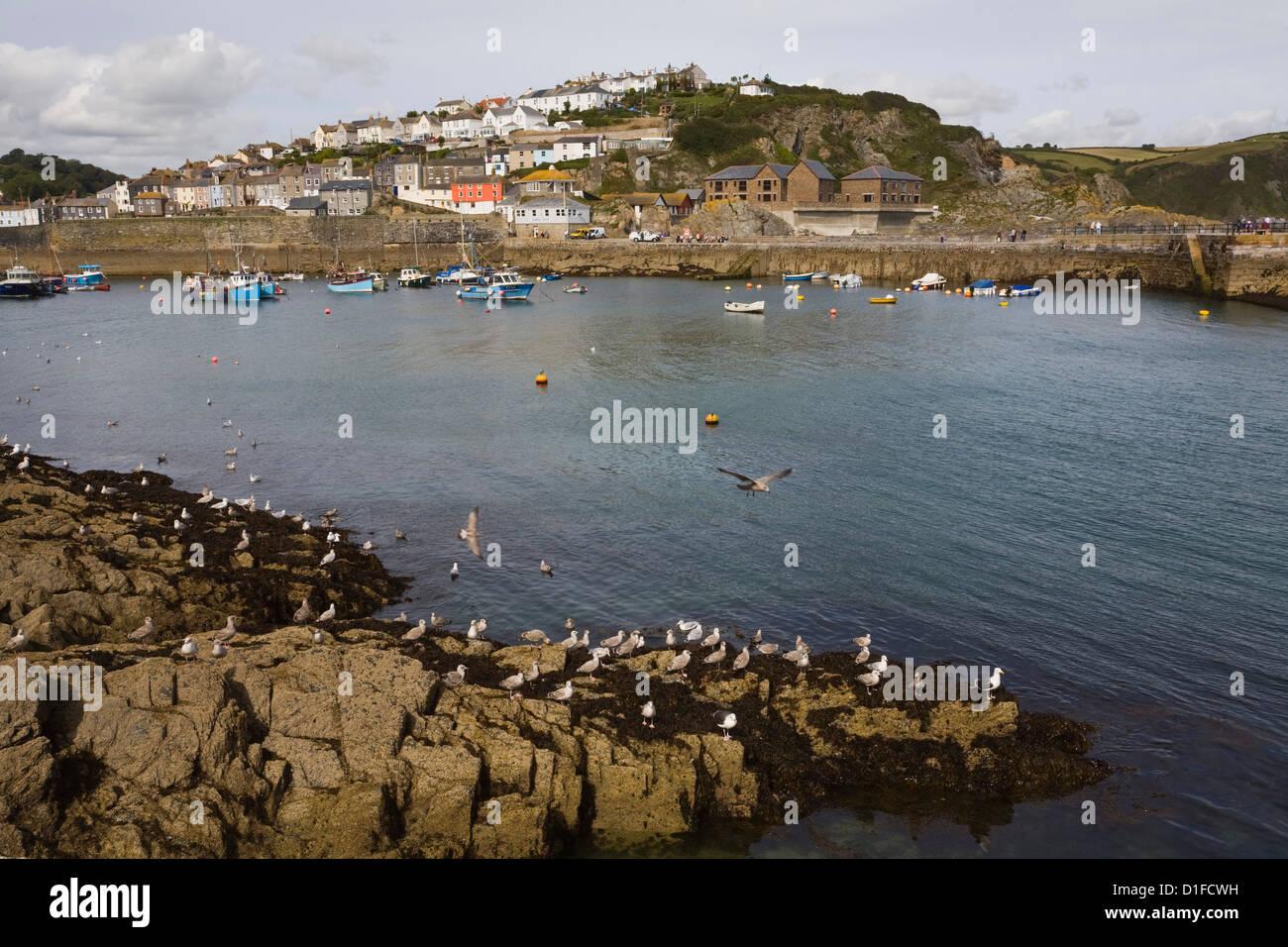 Saint Austell United Kingdom  City new picture : ... Mevagissey, St. Austell, Cornwall, England, United Kingdom, Europe