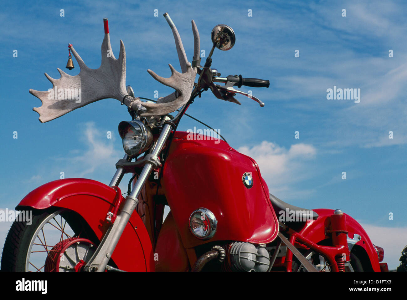 classic red bmw motorcycle with moose antlers mounted on the stock