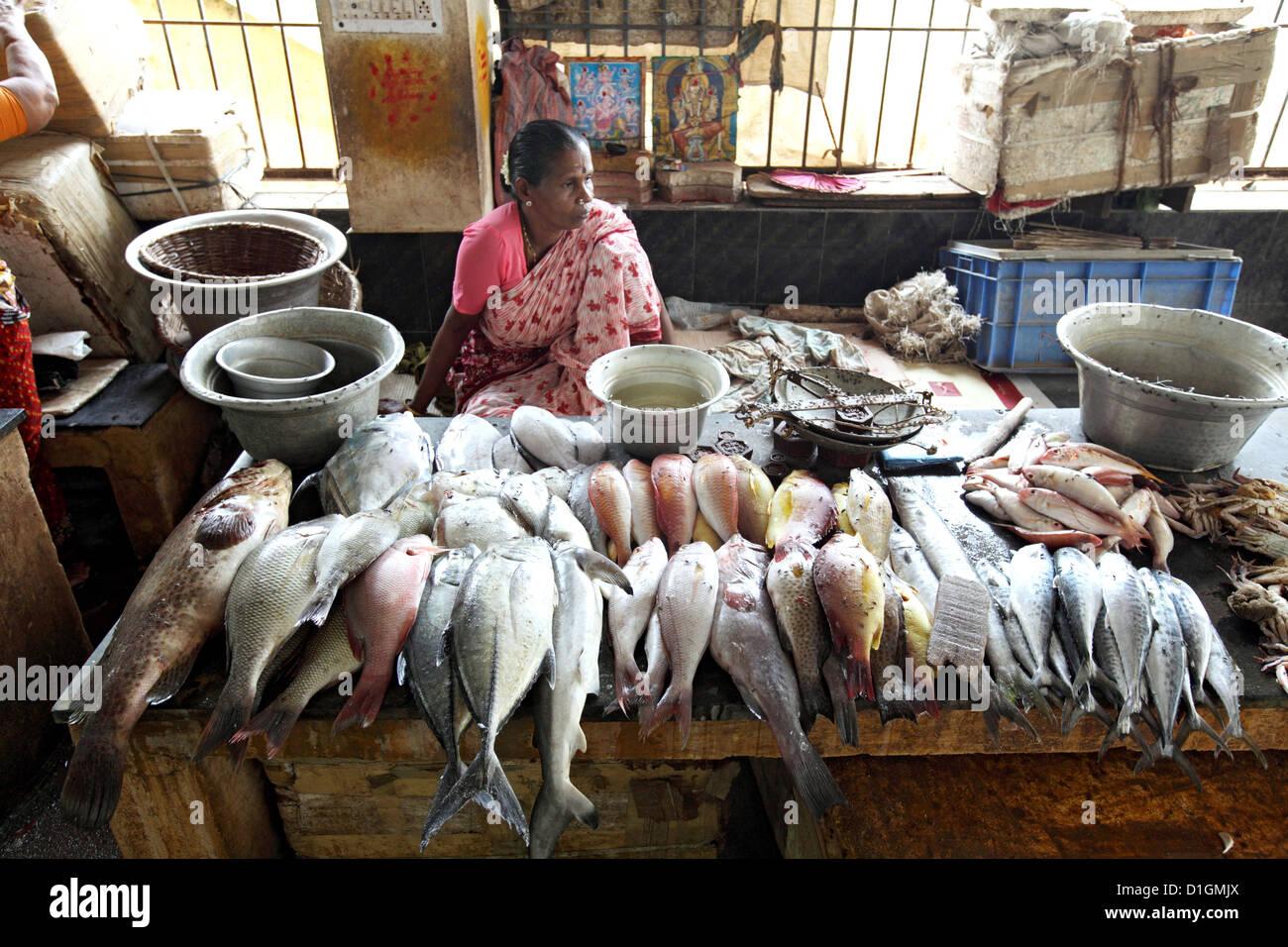 Cuddalore india woman sells fresh fish at the fish for The fish com