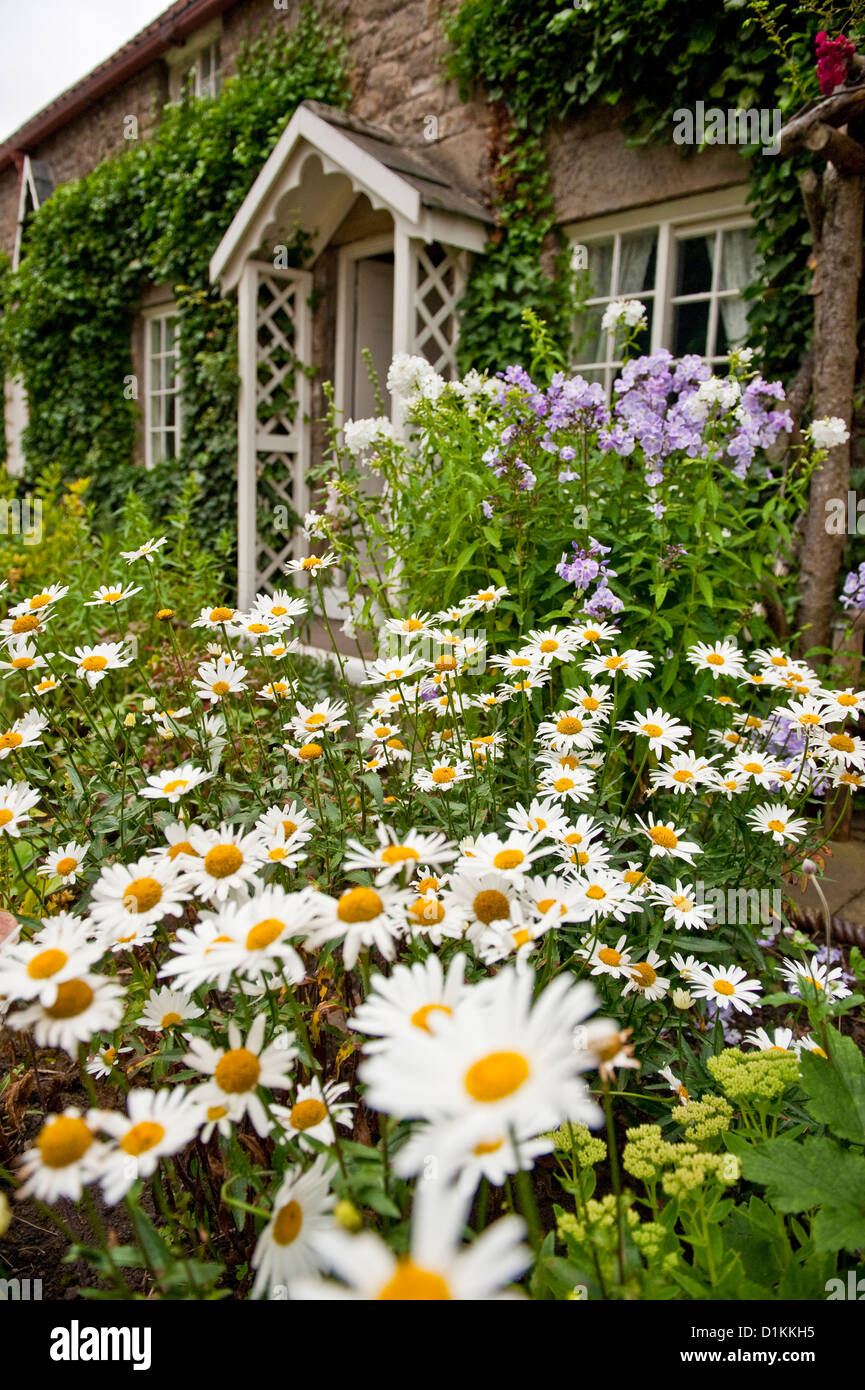 Country cottage garden - English Country Cottage Garden And Flowers Stock Photo Royalty Garden Idea