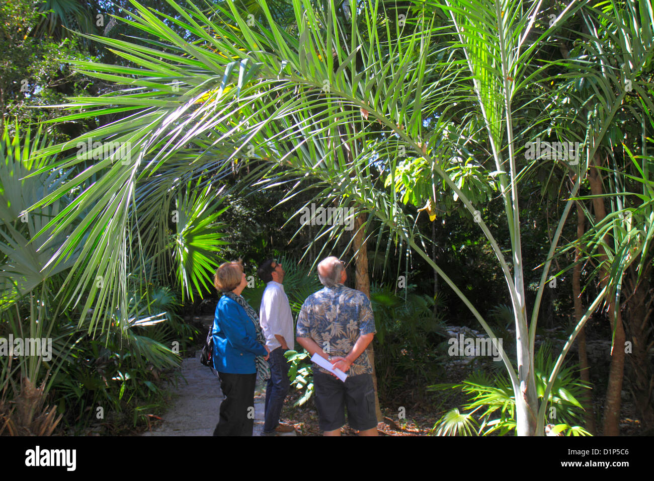Florida Key West Florida Keys Key West Tropical Forest U0026 And Botanical  Garden Frost Free Nature Trail Man Woman Couple Son Looki