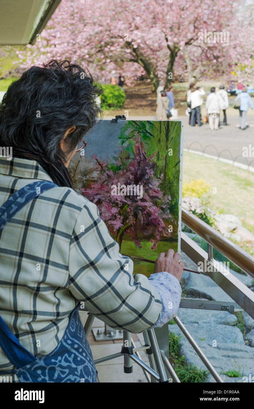 woman painting cherry blossom trees in bloom at shinjuku gyoen national garden in shinjuku park