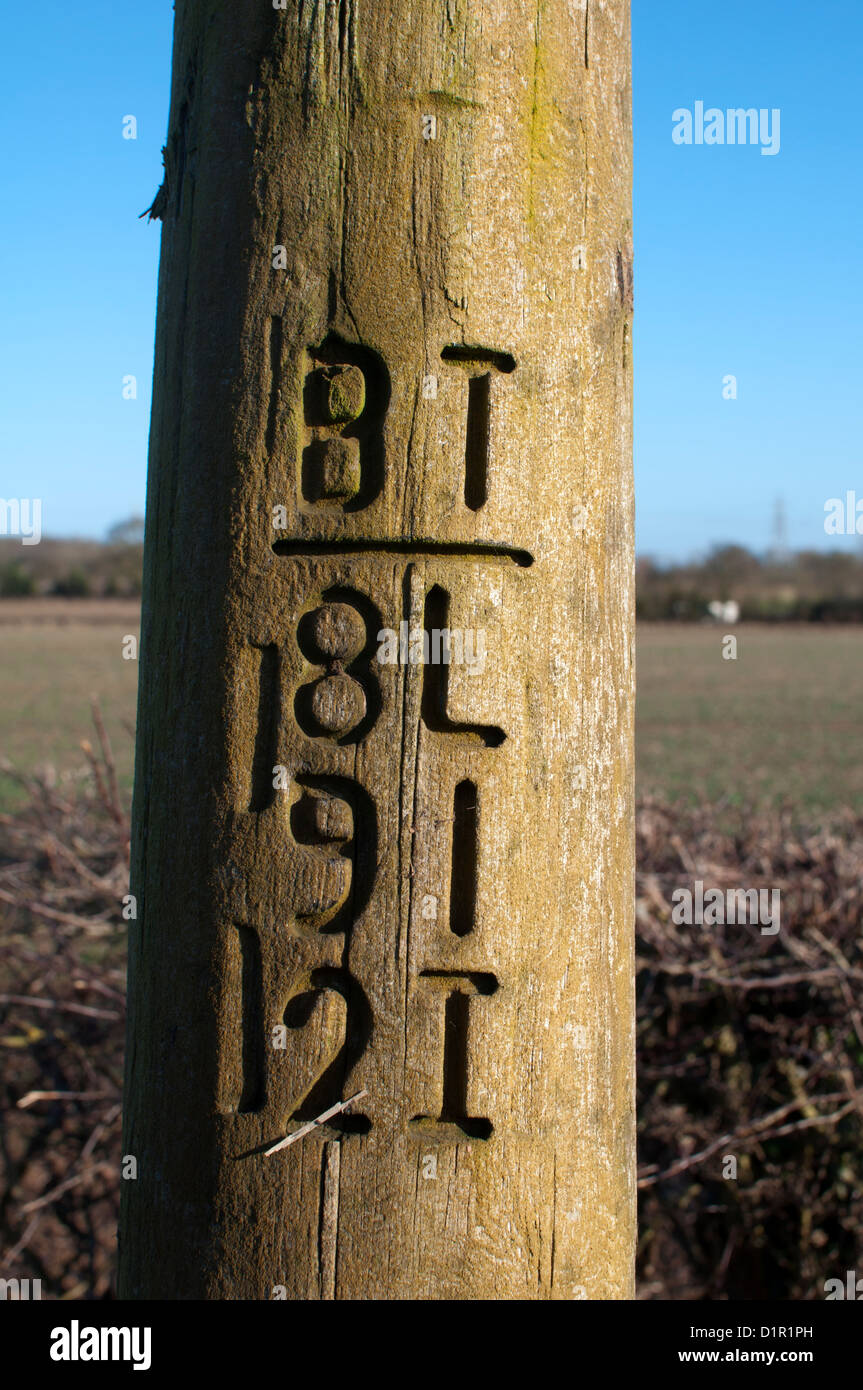 Telegraph pole markings Stock Photo, Royalty Free Image ...