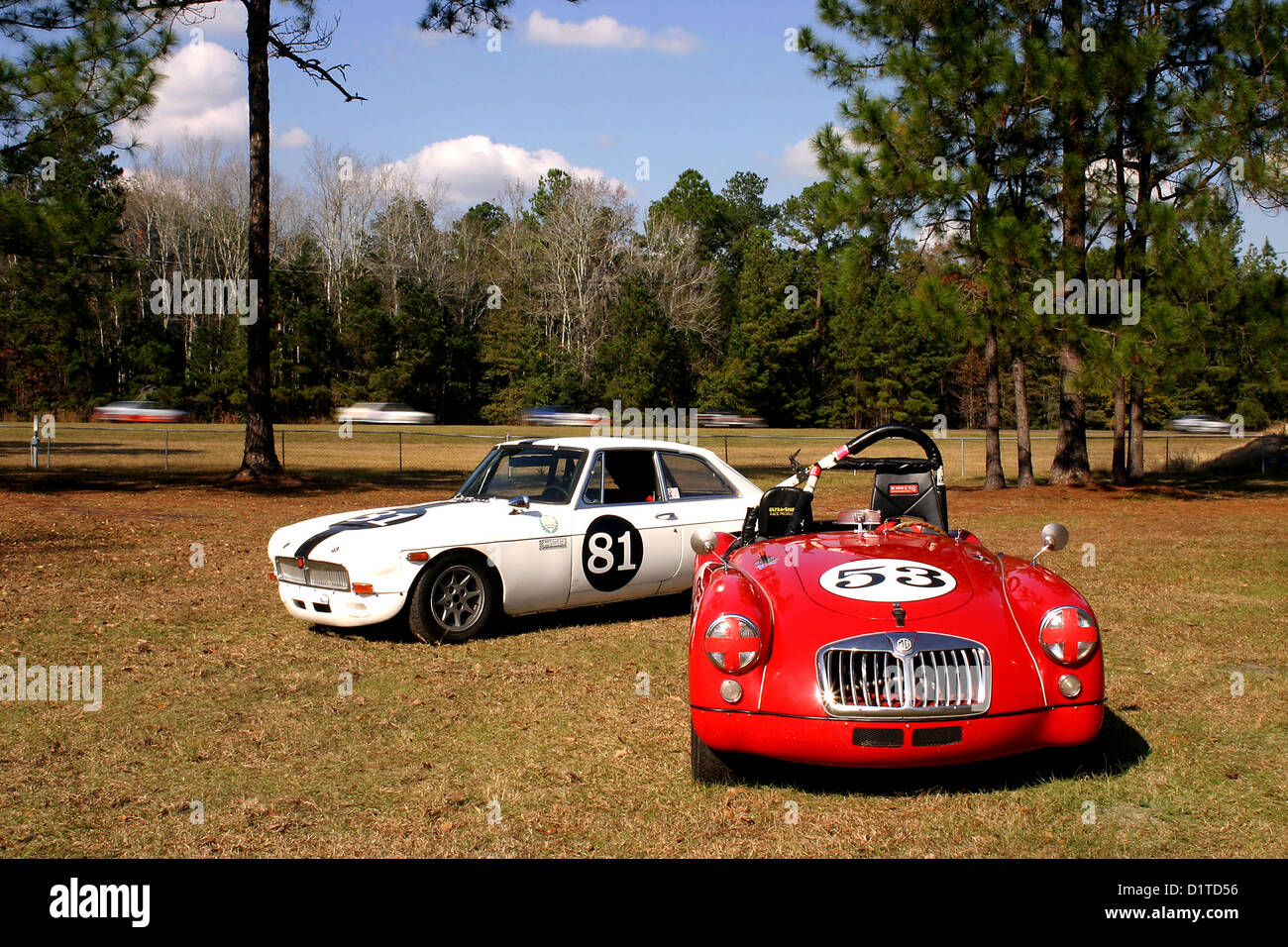 Racing MGB and MGA in the paddock during a Vintage Drivers Club of ...