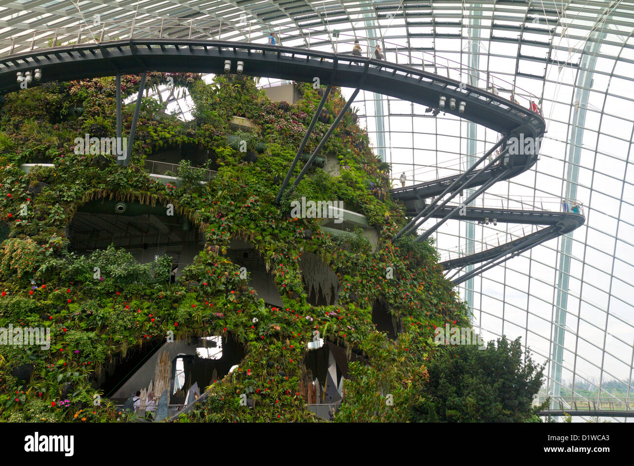 singapore marina bay gardens by the bay cloud forest