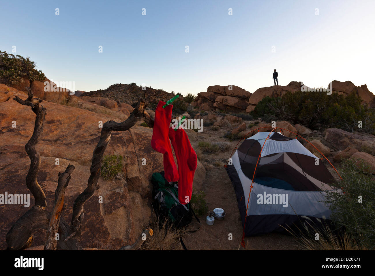 Tent and socks at Joshua Tree National Park at dusk Riverside County California USA America & Tent and socks at Joshua Tree National Park at dusk Riverside ...