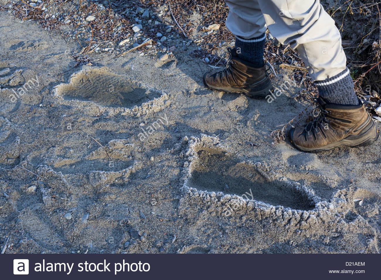 Scientific-proof-that-Bigfoot-roams-the-
