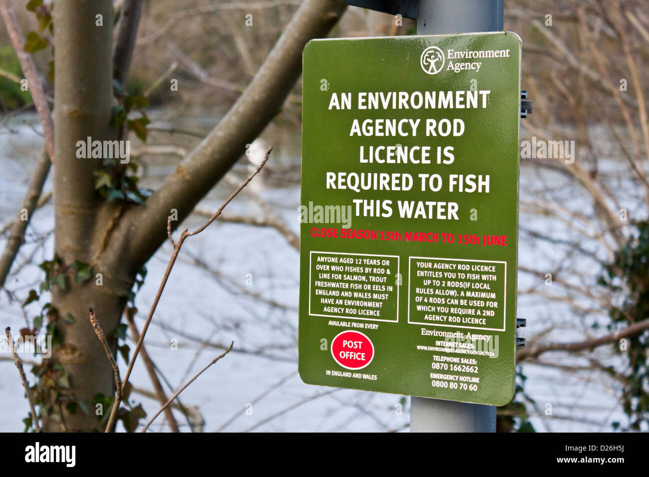 Freshwater fish england - Stock Photo Uk Environment Agency Rod Licence Notice For The River Thames