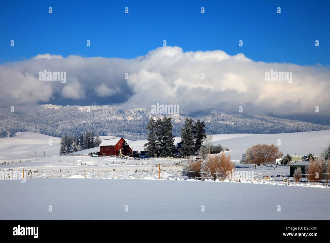 Idaho Winter Scenery
