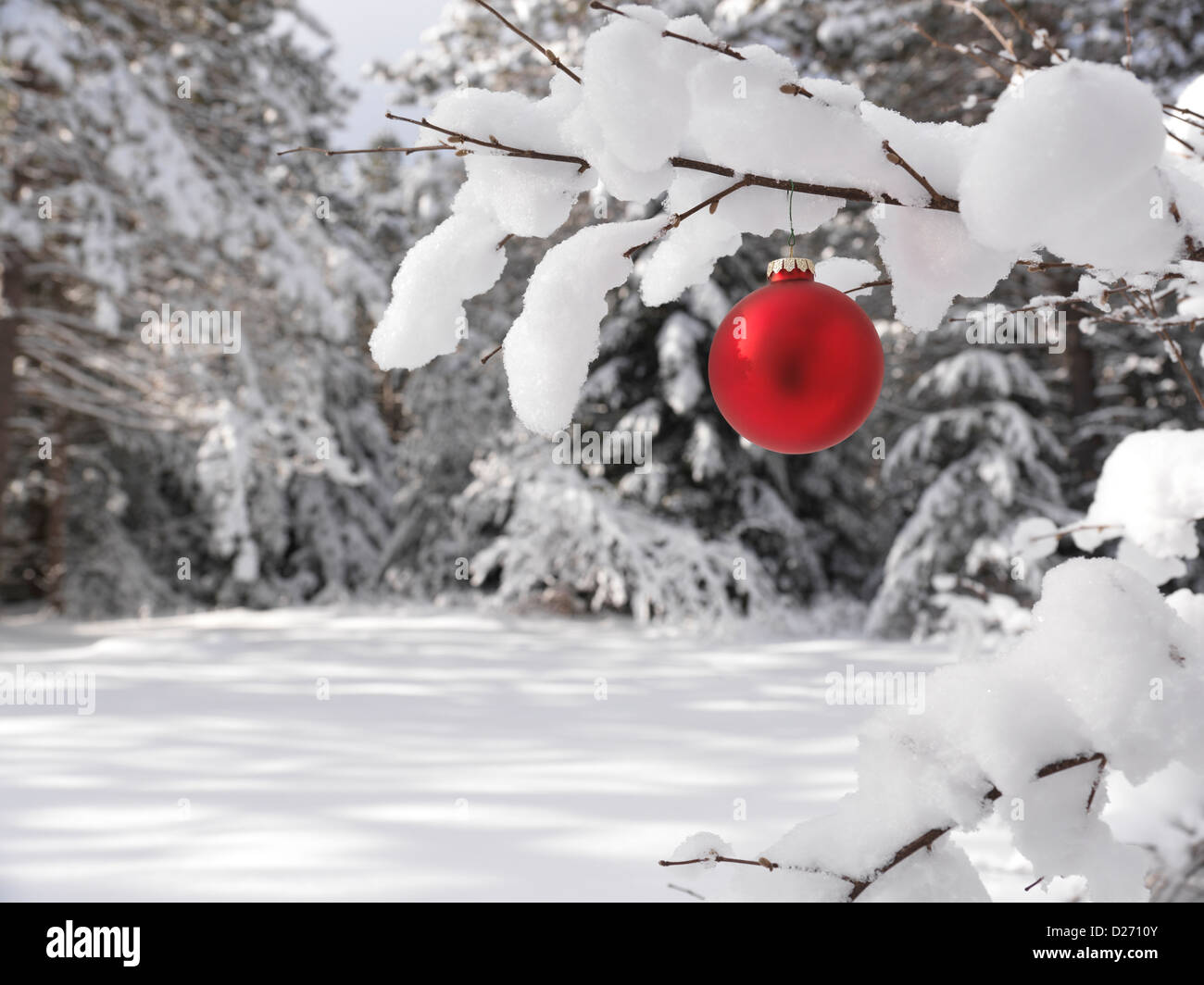 Red christmas decoration outdoors on a snow covered tree branch in a stock photo royalty free for Photo decoration