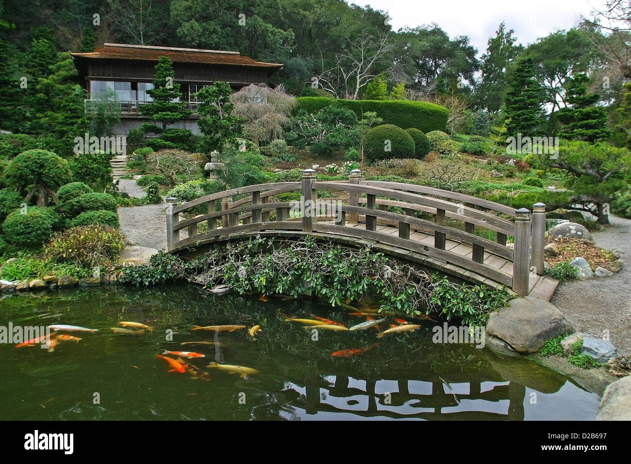 hakone gardens is a traditional japanese garden in saratoga california stock image - Japanese Garden