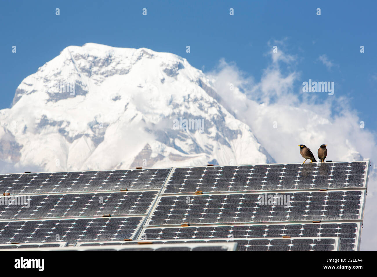 Solar photo voltaic panels at Ghandruk in the Himalayas, Nepal ...