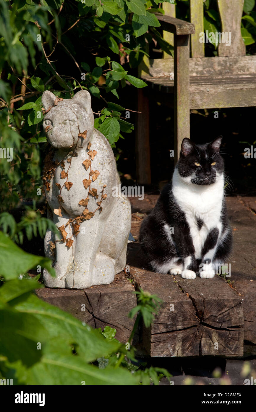 Black And White Cat In English Garden Next To Stone Statue Of Cat