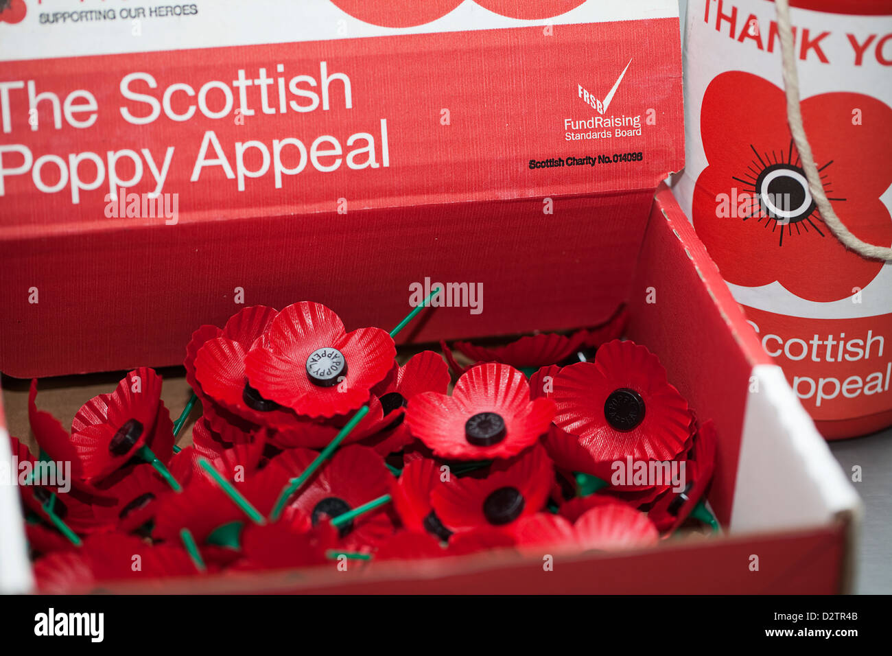 remembrance day poppies for sale in aid of the scottish poppy