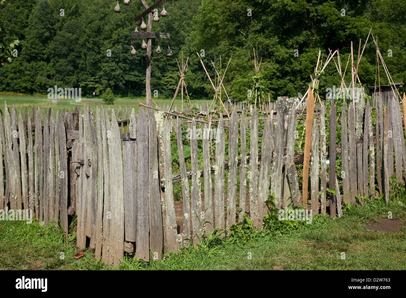 Little Rustic Garden With A Rough, Hand Made Fence Around It, In Sunshine  With