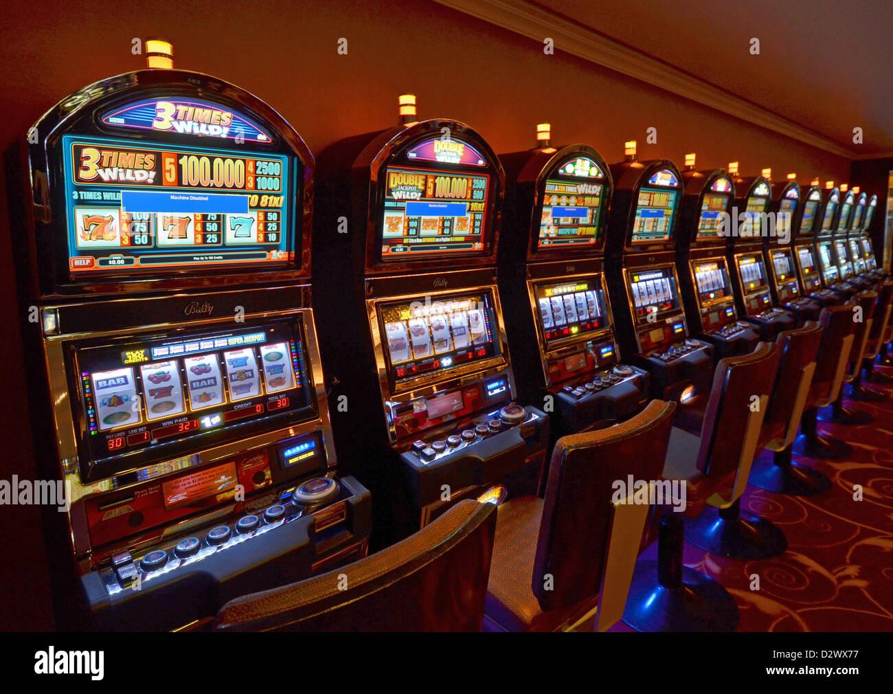 Gambling age on cruise ships gambling paintings