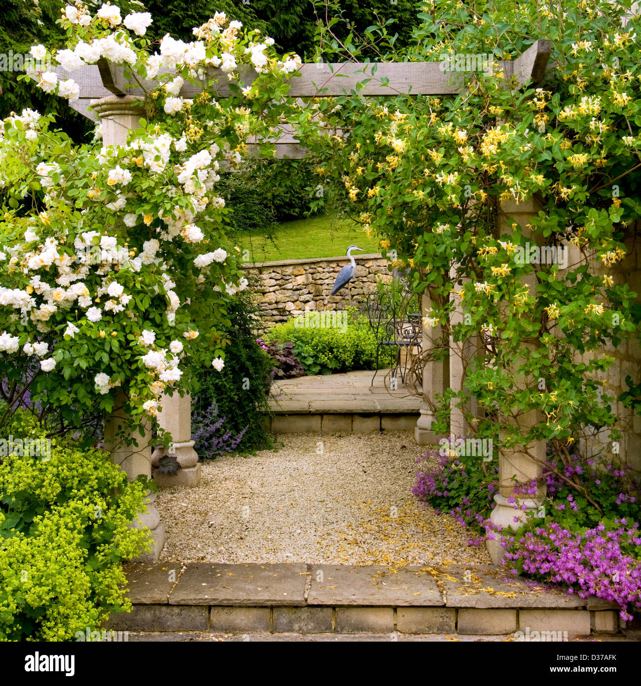 A Garden Pergola With Roses And Honeysuckle   Stock Image