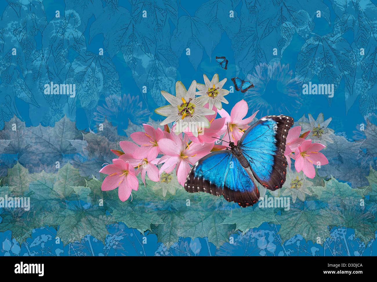 morpho magic photoart of blue morpho butterfly on flowers stock