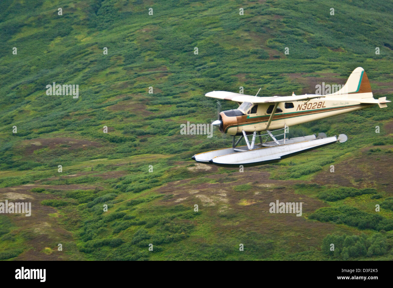 Alaska dillingham county - Dehavilland Beaver Floatplane Flying Over Tundra Near Dillingham Alaska Stock Image