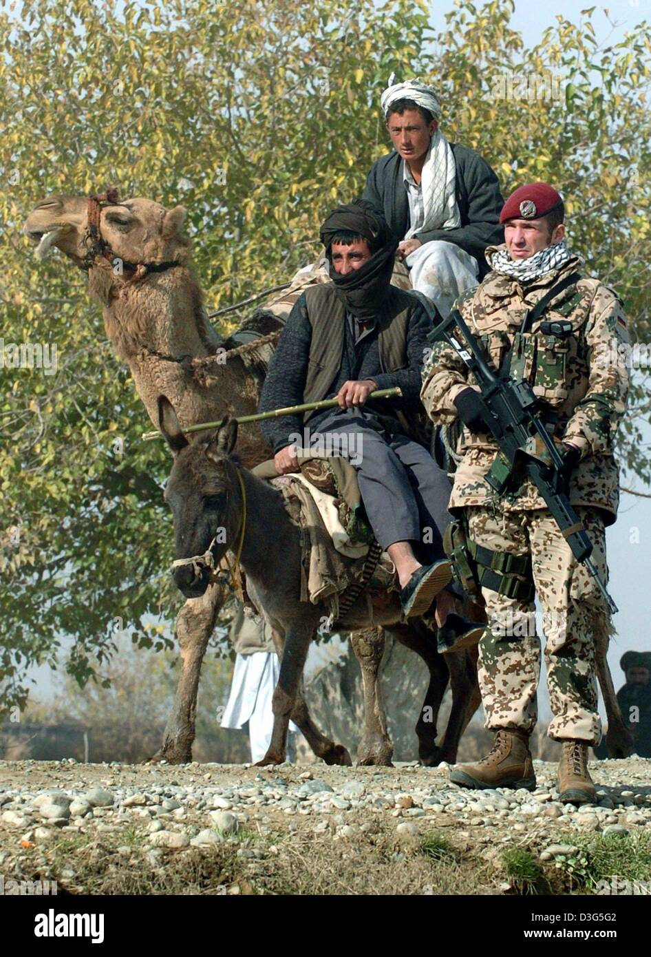 dpa afghan farmers riding on a camel and a donkey pass a german
