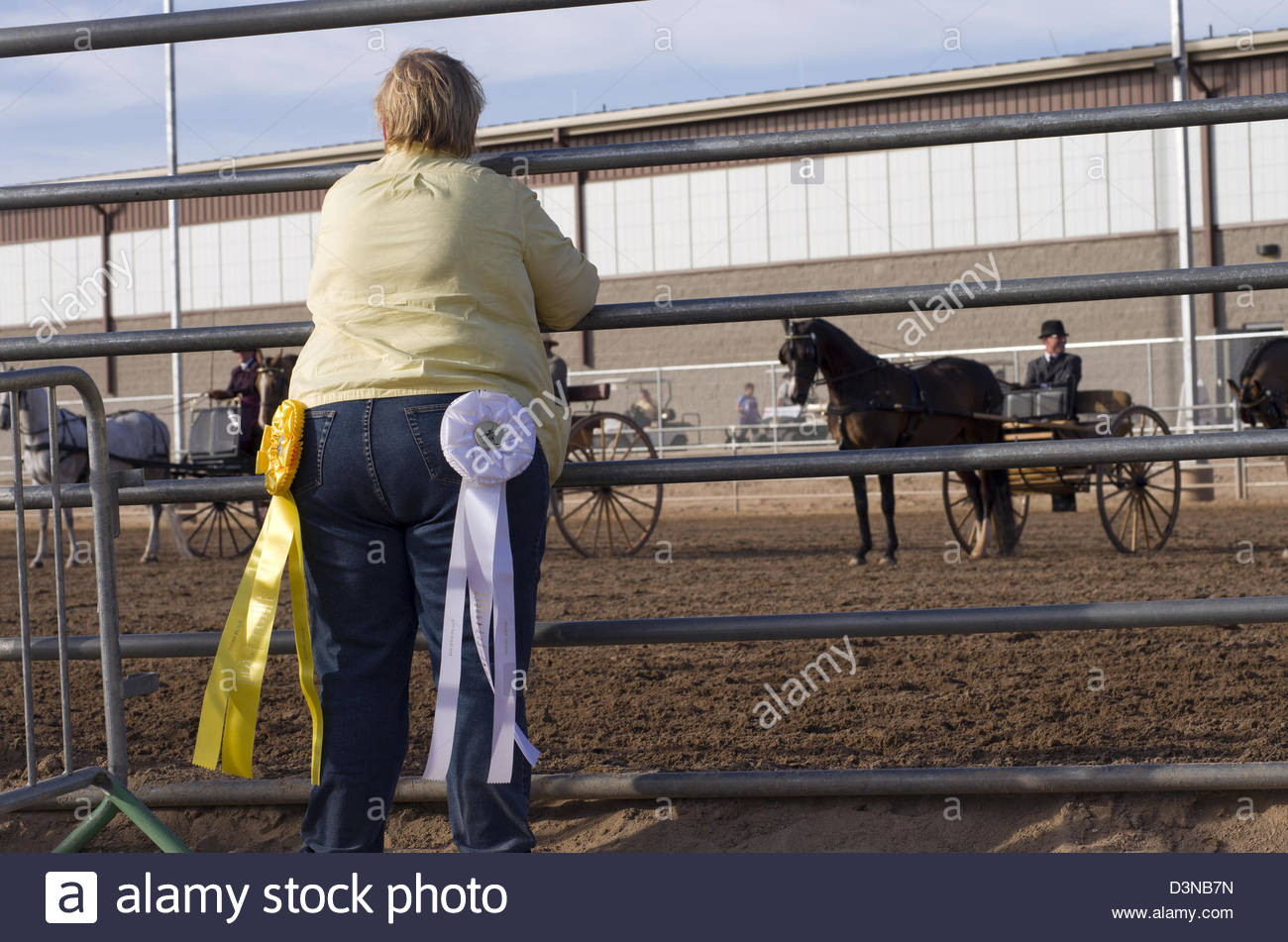 a-horse-owner-displays-her-award-ribbons