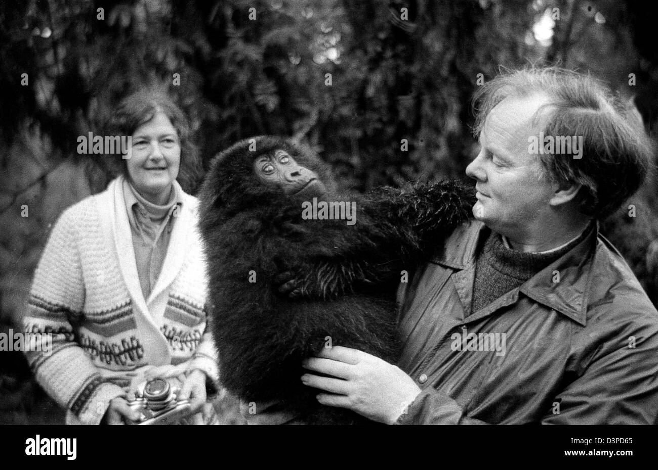 dian foossey Dian fossey (january 16, 1932 - december 26, 1985) was an american ethologist interested in gorillas she completed an extended study of several gorilla groups, observing them daily for years in the mountain forests of rwanda.