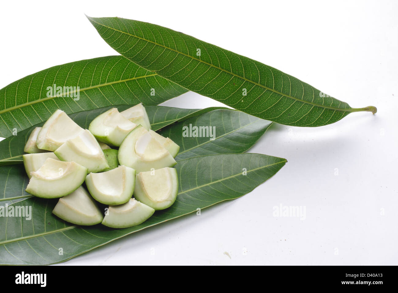 raw cut mango on fresh mango tree leaves Stock Photo ...