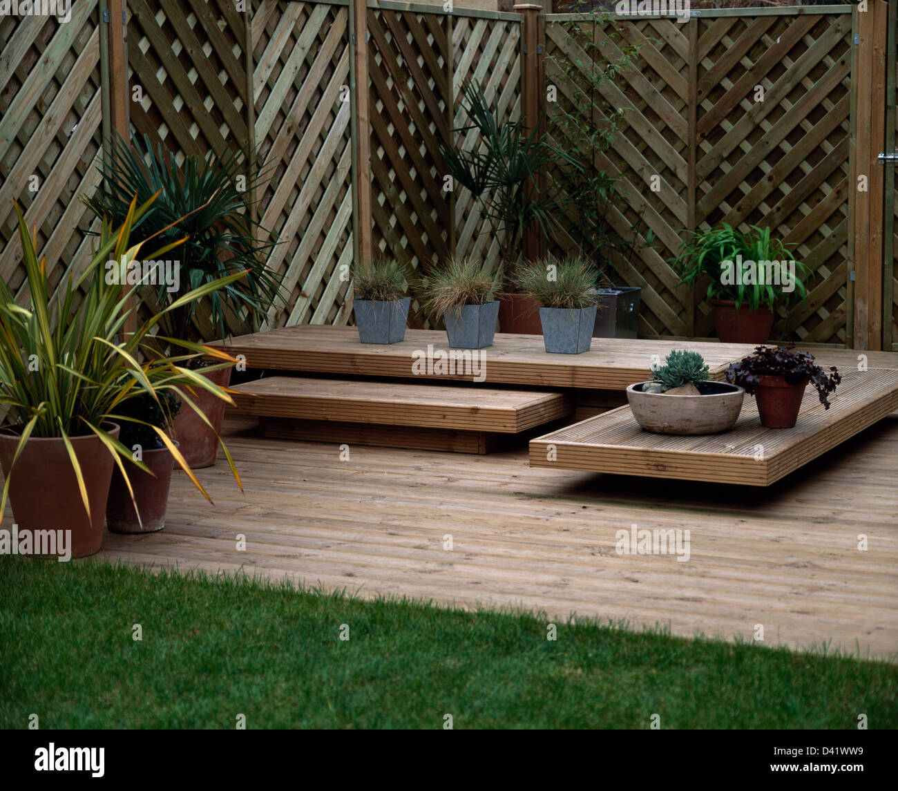 Plants in pots on low wooden table on wooden decking in for Low maintenance deck plants