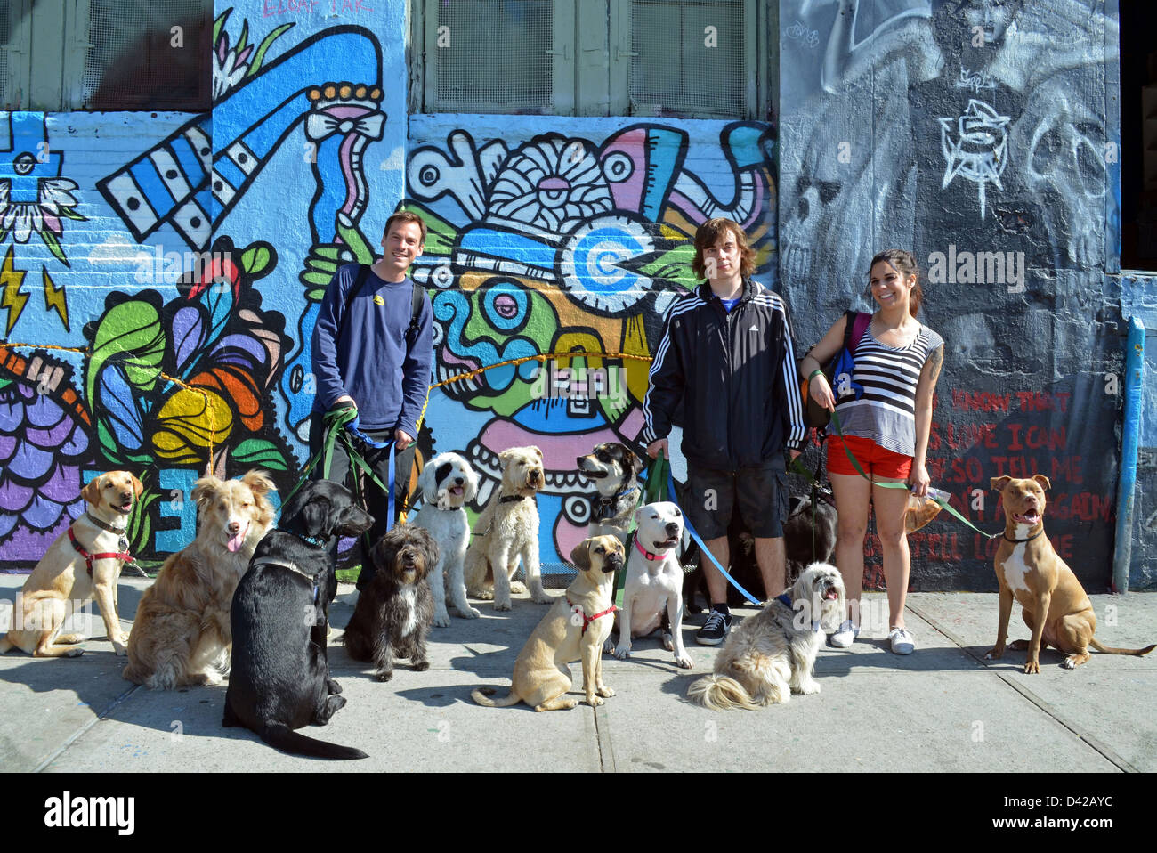 Graffiti wall in queens ny - Dog Walkers In Long Island City Queens New York In Front Of Graffiti Wall At 5 Pointz