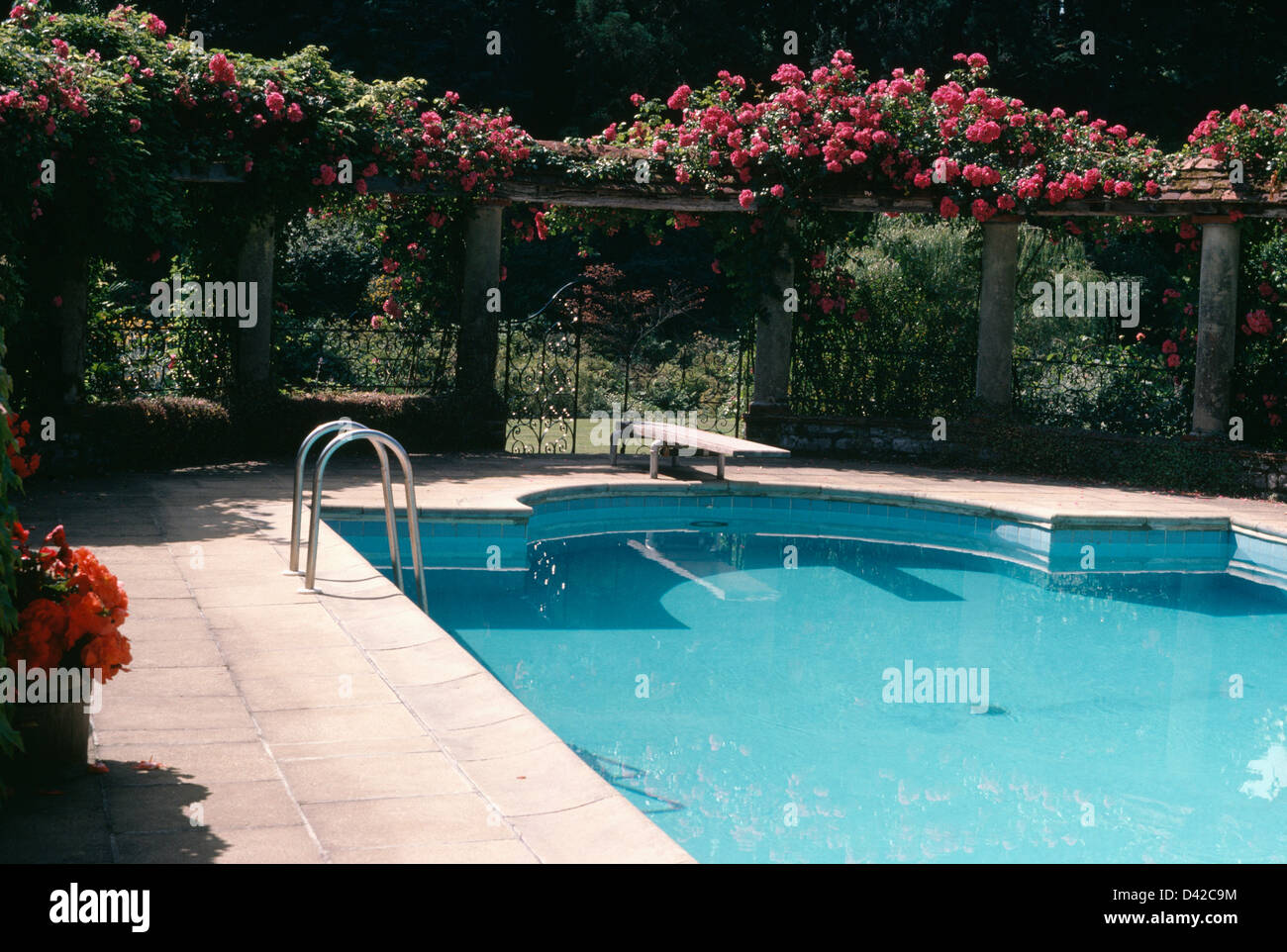 Red climbing roses on stone pillars surrounding turquoise for English garden pool