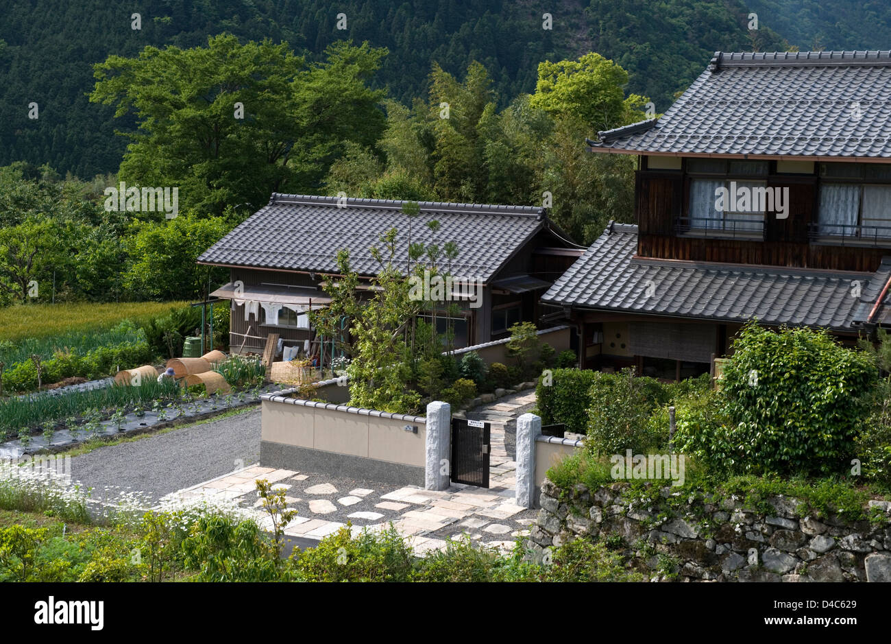 Typical japanese farm house with vegetable garden in the for Garden in the house